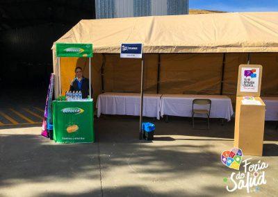 Feria de la Salud 2019 Grupo GAMI en Allan Recycling9